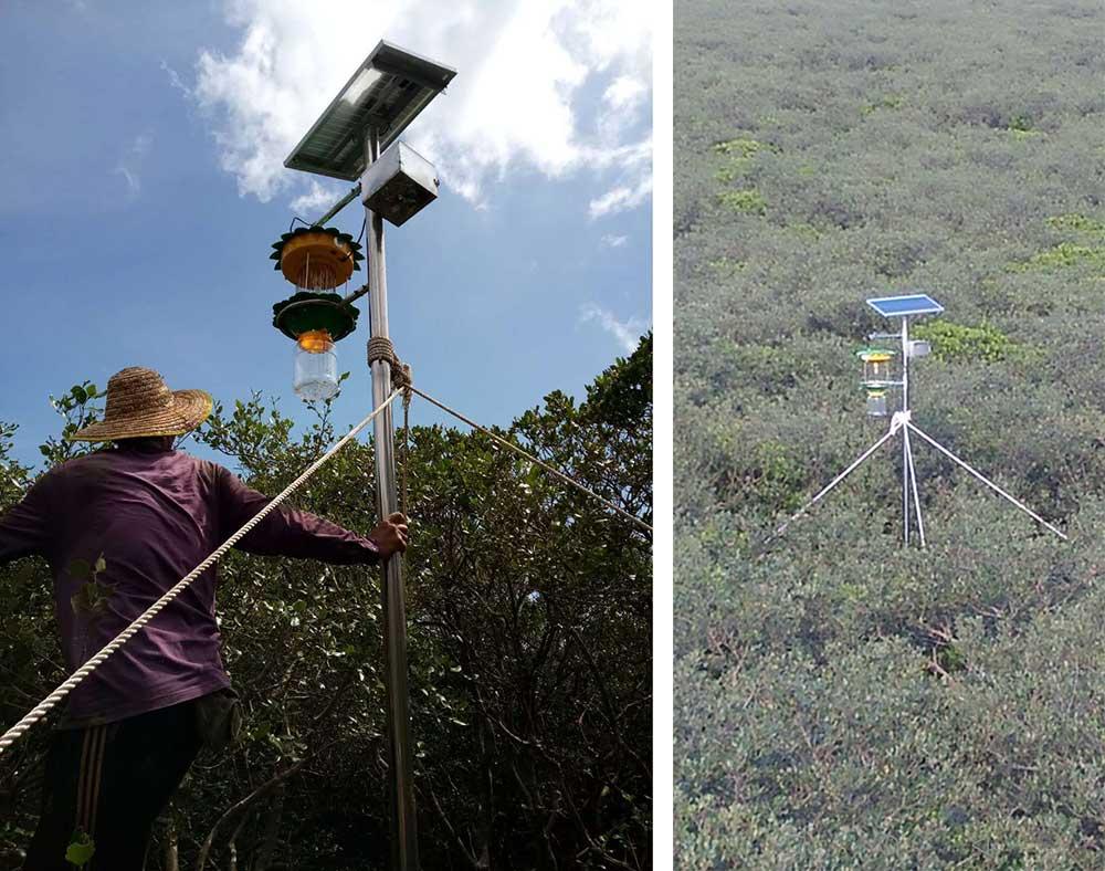 红树林专用单灯智能电网式太阳能杀虫灯